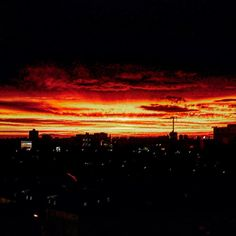The company up under me is shady My childhood friends turned enemies they're hating #toronto #ontario #canada #instasky #skyporn #instasunset #sunset #businessman #entrepreneur #selfmadewellpaid #youngandsuccessful #hihaters #urbanlandscape #orangeskies #cloudporn #fall2015 #fallskies #wethenorth #viewsfromthe6 #6ix #6ixside #eastcoast #goodlife #instanature #success #motivation #hardwork #moneyovereverything by ezrydersentceo