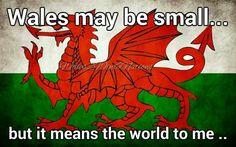 NEW MEN/'S NOVELTY WALES WELSH CYMRU AM BYTH 6 NATIONS RUGBY DRAGON FLAG KILT