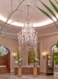 Travel : the Plaza Athénée Paris reopens, unveiling a new couture face | The Parisian Eye