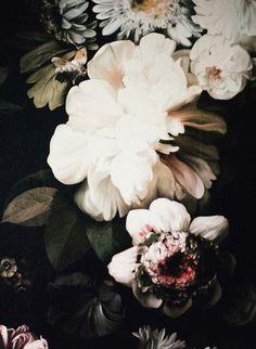 dramatic florals