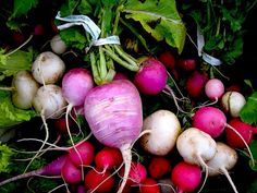 Radishes.    In season mid-April to mid-October.     #EatLocal