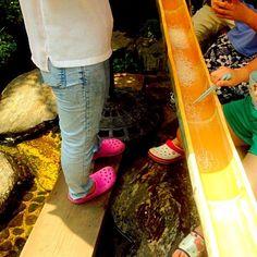 天然の水と天然の竹で毎年おじいちゃんが作る手作り流しそうめん!夏の定番です☀️ - 51件のもぐもぐ - 流しそうめん〜夏の風物詩〜✨ by momoko777