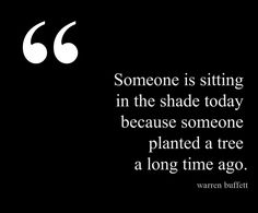 """""""Someone is sitting in the shade today because someone planted a tree a long time ago."""" —Warren Buffett."""