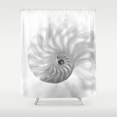 Nautilus Chambers... Shower Curtain