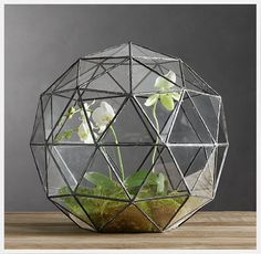 Orchid terrarium idea using a geodesic leaded glass container from Restoration Hardware, and phalenopsis and lady slipper plants. The environment is easier to control for some orchids when they are enclosed in glass. Terrarium Diy, Orchid Terrarium, Glass Terrarium, Terrarium Closed, Terrarium Supplies, Terrarium Wedding, Terrarium Containers, Sweet Home, Geodesic Dome