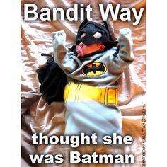 bandit way | Tumblr ❤ liked on Polyvore featuring gerard way, mcr and my chemical romance