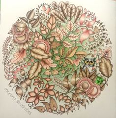 Johanna Basford: Enchanted Forest. Coloured by Morena Vajak #myCreativeEscape