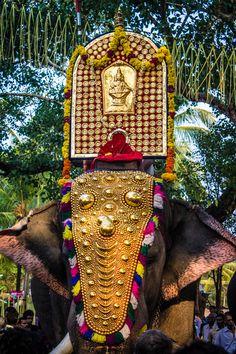 Elephant bearing Thidambu - Pooram Festival in Kerala, India