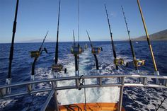 Fishing Trips in Spain. There are different ways of fishing. Find out here ...