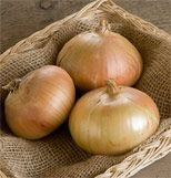 Cheap onion seeds, Buy Quality seeds vegetables directly from China vegetable seeds Suppliers: 250 SEEDS * Bridger Onion Seeds Vegetables Allium cepa seeds Grow Organic, Organic Plants, Organic Gardening, Vegetable Gardening, Garden Seeds, Planting Seeds, Easy Garden, Lawn And Garden, Planting Onions