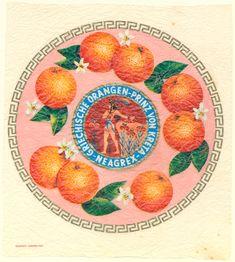Vintage Packaging, Vintage Labels, Vintage Posters, Vintage Graphic Design, Vintage Designs, Vintage Art, Paper Fruit, Orange Paper, Branding