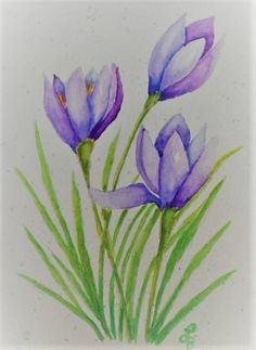 Watercolor Crocus Card Watercolor Greeting Card hand painted Source by Watercolor Paintings For Beginners, Watercolor Projects, Watercolor Trees, Easy Watercolor, Watercolor Cards, Floral Watercolor, Watercolor Birthday Cards, Flower Drawing Tutorials, Floral Drawing