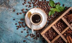 Climate Change Threatens Coffee Industry in Ethiopia - All Things Africa News Coffee Industry, New Africa, African Countries, Ethiopia, Climate Change, How To Make, Country, News, Rural Area