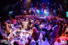 Business boksgala in Bunnik nog perfecter Concert, Business, Recital, Concerts, Festivals