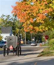 Indiana ~ Many of our neighbors are Amish.  They are lovely people.  They help us to slow down.