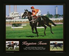 Kingston Town Black gelding (1976 - 1991) Bletchingly - Ada Hunter Trainer – T.J. Smith Owner – David Hains Race record – 41 starts: 30 wins, 5 seconds, 2 thirds Stake money – $1,605,790 Major Wins: AJC and QTC Derbies, Rosehill Guineas STC Tancred Stakes Sydney Cup W.S. Cox Plate (three times) George Main Stakes (twice) Caulfield stakes (twice)