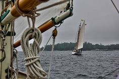 """Challenge: """"Boats, Ships, Yachts, Schooners Etc.."""" Aug. 31- Sept. 5th 2020 Beautiful Series, Beautiful Park, Sail Boats, Dinghy, Cape May, Road Runner, Water Crafts, Yachts, Photo Contest"""