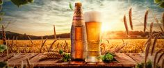 Cerveza Cusqueña - Revestimiento Web on Behance