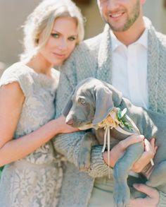 É impressão ou esse cachorrinho combinou perfeitamente com o look dos noivos? Família perfeita!