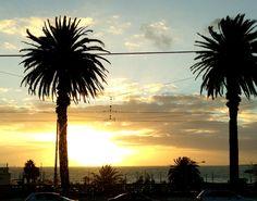 Easy living in Melbourne #reiseblog #reiseblogger #australien