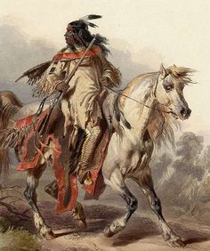 Google Image Result for http://www.theequinest.com/images/grey-art-2.jpg