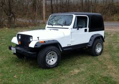 Old-New Trout Truck.   New flares, rocker covers, bumper ends and all new weatherstripping around the doors and windshield.   Black faced.   No lift this time.  The old Jeep is a blast to drive and is great for getting to the next fish'in hole.