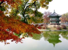 ☺Fascinating 2013 - Exploring the old and the new in Seoul, South Korea in autumn with family