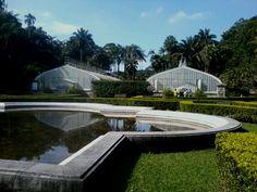 Jardim Botânico de São Paulo.