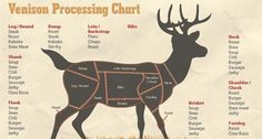 Wondering how to be your own butcher? Start here by learning which different venison cuts are used for which recipes.