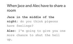 I've seen this for Lance and Keith too so I've just now noticed that they have the exact same personalities as Jace and Alec.