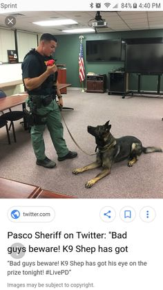 Pasco Co. Fla. Police Dogs, Military Police, German Shepherds, German Shepherd Dogs, K9 Officer, Dog Soldiers, Pasco County, Malinois, Police Life