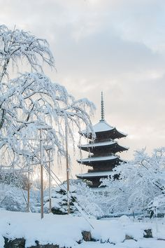 Snow in five storz pagoda of To Ji Temple,Kioto,Japan