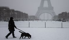 """""""Dogs are no longer personal property but living beings under the law in France. Nearly 700,000 signed a petition against the 1804 law that categorized pets as """"movable goods"""" such as tables and chairs. The change to the law gives 63 million pets more protection against cruelty and brings the civil law in line with the penal code. The vote occured in the national assembly on Tuesday night still has to be approved by the..."""""""