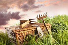 Уход за садовым инструментом   Нас с детства учили: чтобы вещь служила долго, о ней надо заботиться. Сказанное касается и верных дачных помощников – садовых инструментов.   Итак, чтобы продлить срок службы садового инвентаря, надо за ним ухаживать. Как только закончится дачный сезон, инструменты нужно осмотреть, почистить (если надо – подремонтировать) и убрать на хранение.   Очистка инвентаря. Запомните: инструменты нужно чистить не только перед зимним хранением, а каждый раз после…