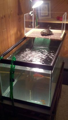 ♥ Pet Turtle ♥  A DIY turtle topper above tank basking platform provides a nice basking area ~ Pet care ideas.: