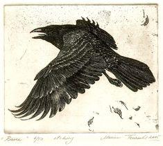 Raven, by Marina Terauds