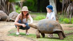 South Africa & Mauritius - Family Holiday - #GiantTurtle and Children, #Mauritius #Steppes Onward to Mauritius, a beautiful island with more than just its tropical beaches on offer. Kids can enjoy a great programme of fun, from beach and water activities to a mini chef experience. We can even arrange a trip in a submarine.