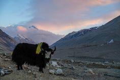 Hoy es uno de los días más esperados del viaje, en el que llegaremos al Campo Base Everest Tíbet, uno de los lugares más increíbles del mundo.