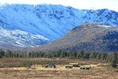 Strålseter høst 2012 020