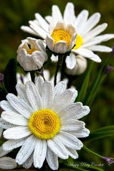 Crochet Daisy Flower Pattern Shasta Daisy by HappyPattyCrochet