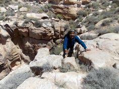 Wadi Dana Eco-camp offers guided hikes to suit all abilities & interests