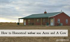 "How to Homestead Without 100 Acres and A Cow | When I hear the following comment: ""I really want to homestead, but we're waiting until we ca..."