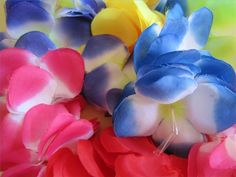 Luau Party for Kids (includes great ideas for snacks)