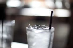 Hold the Straw…and Other Tips for a Humane and Sustainable Life