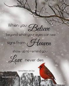 When you believe beyond what your eyes can see signs from heaven show up to remind you love never dies. When You Believe, Signs From Heaven, Miss You Mom, First Love, My Love, Love Never Dies, After Life, In Loving Memory, Cardinals