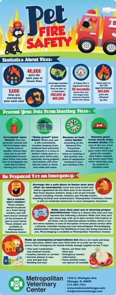 Fire Safety Tips For Your Pets – Infographic on http://www.bestinfographic.co.uk