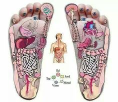 What is Reflexology? Acupressure Treatment, Acupressure Points, Massage Corps, Reflexology Massage, Massage Benefits, Alternative Therapies, Holistic Healing, Massage Therapy, Health Fitness