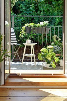 """Garden Graffiti (Part 5) """"It's a Small World""""  (....small space garden inspirations)"""