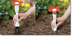Black & Decker PlantSmart Digital Plant Care Sensor - $17.99 on amazon - Pretty neat product, you stick it in your soil and then after a while you bring it in and plug the usb part into your comp. and read the plant care advice, etc. It measures sunlight, temperature, moisture, soil conditions and more!!