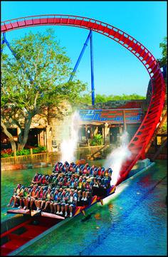 Busch Gardens, Tampa Bay, Florida